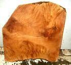 MAPLE BURL SLAB TABLE COUNTER ART CRAFT APPROX 22X22X2 IN