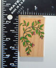 Hero Arts Rose Buds Rubber Stamp C1173