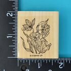 Stampin Up Poppies Poppy Flowers Wood Mounted Rubber Stamp