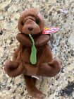 seaweed Ty Beanie Baby EXTREMELY RARE MISMATCH WRINKLES TAG ERROR