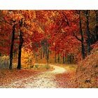 Fall Autumn Leaves Road Trail Kitchen Glass Cutting Board Country Decorative