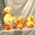 Quackie Ty Classic & 4 Ty Quackers Beanie Babies Lot of 5 Ducks Easter $39.99