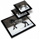 Glass Placemat  2x Coaster Cute Foal Horse Pony Snow 2130
