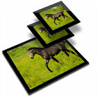 Glass Placemat  2x Coaster Horse Foal Pony 3323