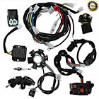 Electric Wiring Harness Wire Loom CDI 6 coil Stator Kit for ATV QUAD 125cc 150cc