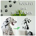 Paw Prints Wall Stickers + Transfer Decal Service Cat Dog Any Photo Conversion