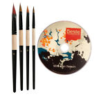 Beste Fountain Brush Set of 4 with DVD