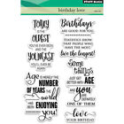 Pack 2 Penny Black Clear Stamps 5X7 Birthday Love Part PB30413 by Penny Bla