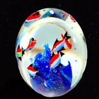 Vintage Murano Art Glass Paperweight Fish Sea World Glass Blue Red 4T 35W