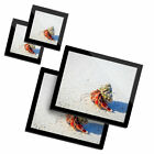 2 Glass placemates  2 Glass coaster Hermit Crab Shell Sandy Beach 16115