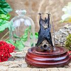 G10d Taxidermy Oddities Curiosities Real Hanging Fruit Bat Glass Dome Display