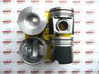 4X PISTON WITH RINGS FITS FIAT DUCATO IVECO DAILY 23 JTD 8V DIESEL 8800mm STD