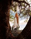 SPACE SHUTTLE ENDEAVOUR ROLLS TO LAUNCH PAD FOR STS 77 8X10 PHOTO EP 411