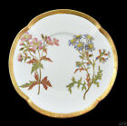 Fine Antique Small Plate Royal Worcester England 1890 Blue Yellow Red Purple