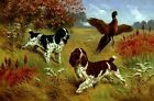 ENGLISH SPRINGER SPANIEL Dogs (2 Colors) w Pheasant.18
