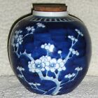 ANTIQUE CHINESE KANGXI PRUNUS BLOSSOM GINGER JAR VASE DOUBLE BLUE CIRCLE