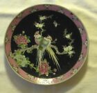 Antique deep blue NIPPON Enameled Hand Painted Birds & Floral Themed PLATE