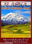 Denali National Park Alaska United States America Travel Advertisement Poster 2