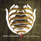 Until My Heart Caves In by Audio Adrenaline (CD, Aug-2005, BMG Direct)