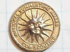 PIN STICK LAPEL ROUND NATIONAL SUMMERTIME AWARD CUB SCOUTING GOLD COLOR ANTIQUE