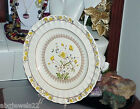 Spode Buttercup Dinner Plate England Vintg Old Spode Mark Bright Color Antique