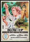 BLOW UP Spanish 1Sheet fashion photography Michelangelo Antonioni filmartgallery