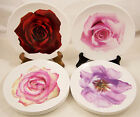 8 Wedgwood Bone China Bloomers Salad Plates Cream Pink Red Roses Purple Lisiant