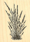 Lavender Branch Wood Mounted Rubber Stamp Impression Obsession Stamp E14178 New