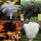 100PCS OSTRICH FEATHERS 12 14inches 30 35cm wedding white black