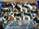 NEW 1993 Herd A Herfords Cow String Light Set and Covers by Primal Lite