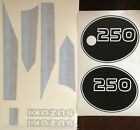 SUZUKI TS250 TS250ER DECAL SET