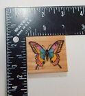All Night Media Butterfly Rubber Stamp 345E