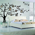 Large Photo Picture Frame Family Tree Removable Wall Sticker Decor Decal Black F