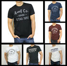 New Abercrombie Fitch AF by Hollister Men Applique Graphic Logo Tee Shirt Size