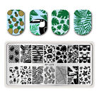 Nail Art Stamping Plates Summer Fruit Leaf Image Stamp Templates DIY Born Pretty