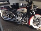 2007 Harley Davidson Softail Harley Davidson Soft Tail Deluxe with tons of extras