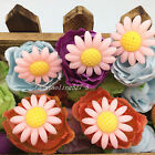 10pcs pink 24mm Daisy Resin Flatback Cabochon ScrapbookIng for phone craft