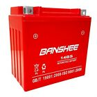 YTX14 BS Motorcycle battery for Piaggio BV Tourer 250 MP3 250 250cc Banshee