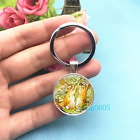 Peter Rabbit Art Photo Tibet Silver Key Ring Glass Cabochon Keychains 381