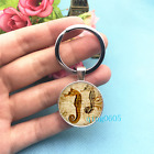 Seahorse Art Photo Tibet Silver Key Ring Glass Cabochon Keychains 457