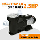25HP IN GROUND Swimming spa POOL PUMP MOTOR Strainer above Inground 110V