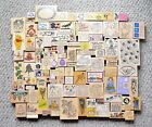 HUGE LOT Wood Mounted Stamps All Night Media Rubber Stampede + MORE MUST SEE