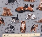 SNUGGLE FLANNEL REAL KITTENS  CATS on GRAY 100 Cotton Fabric BTY