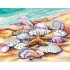 PAINTWORKS Paint by Number Kit SEA SHELLS Beach 14 x 11 inches Dimensions