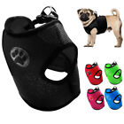 Soft Mesh Padded Dog Harness Paw Print Small Dog Puppy Vest for Chihuahua Yorkie