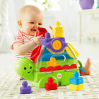 Fisher Price Little Stackers Sort n Spill Turtle