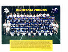 Minnesota Vikings Collecting and Fan Guide 8