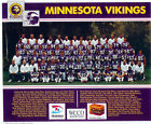 Minnesota Vikings Collecting and Fan Guide 16