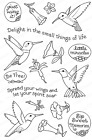 HUMMINGBIRD Set CLEAR Unmounted Rubber Stamps Impression Obsession CL851 New