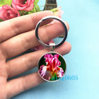 Iris Flower Art Photo Tibet Silver Key Ring Glass Cabochon Keychains 254